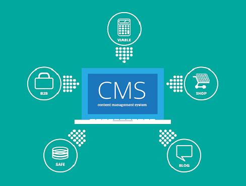 Jaki CMS wybrać – autorski czy gotowy?